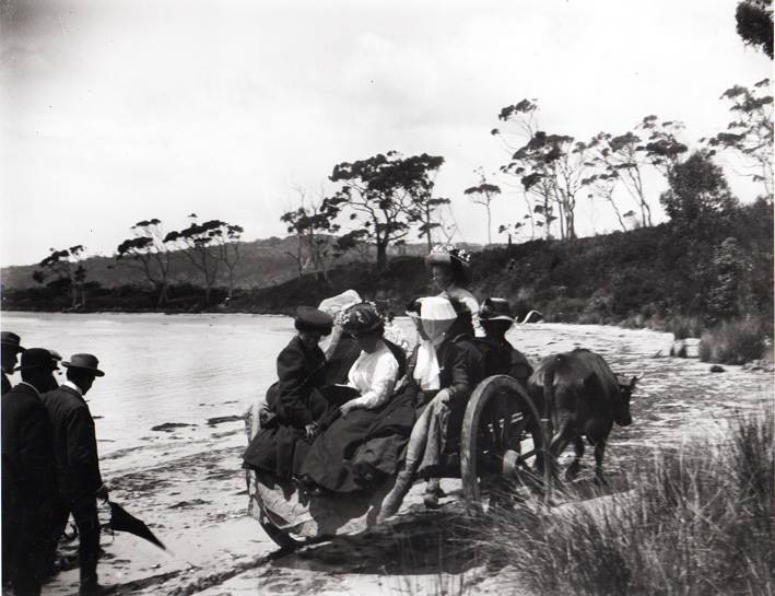 Old Jetty Beach Horse and Cart 1893